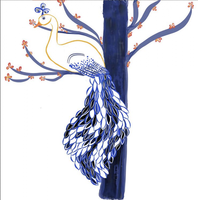blue peacock in a tree